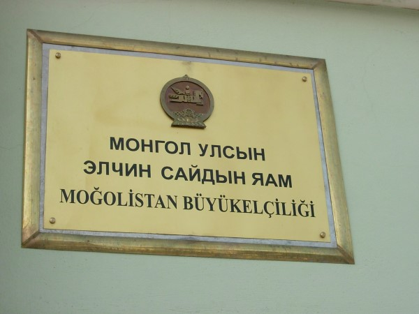Mongol Badarchin Turkey (12)